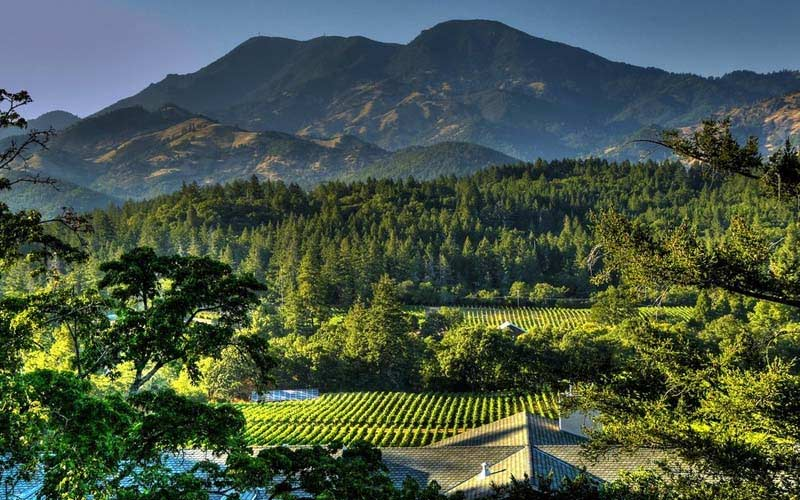 Things To Do In Napa Other Than Wine