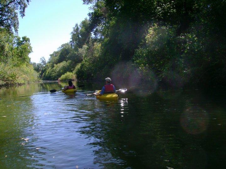 Napa Kayak Rental